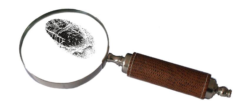 Máster en Criminología